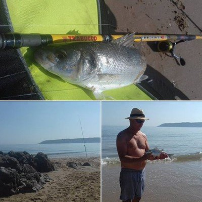 Athena Beach 450 100g . heavy , medium and light tips . Light and fast beach surf casting rod last in stock