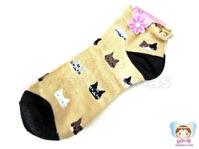 Calcetines Gatos