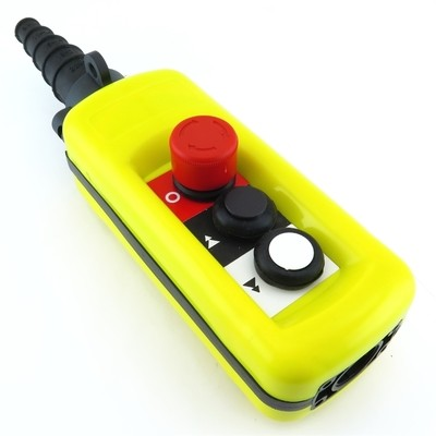 2 Way Pendant Station 2 Speed A2913
