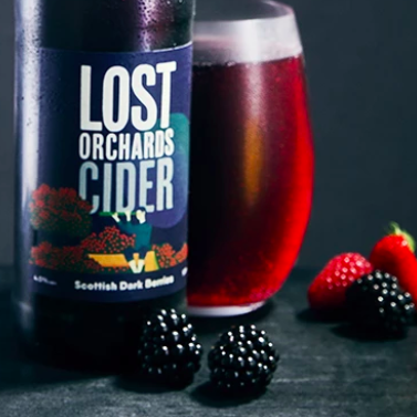 Lost Orchards Dark Berries Cider Sorbetto
