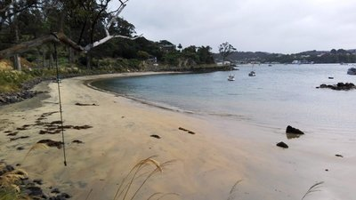 Stewart Island Adventure - February 2nd to 5th 2020