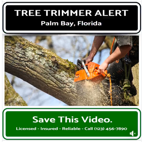 Tree Trimmer Video - 1