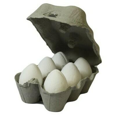 Box of 6 Bath Eggs - Coconut - White (6x 50gm)