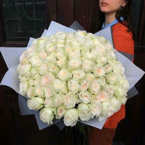 101 Роза White O'Hara