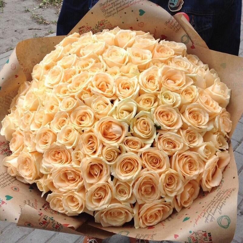 101 роза (Россия) Пич Аваланж