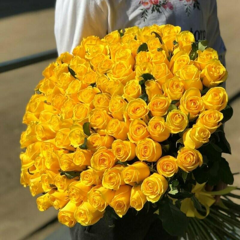 101 роза (России) Пени Лейн