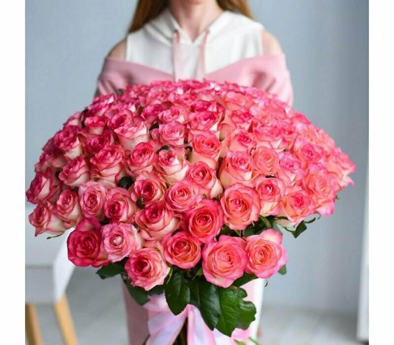 101 роза (Россия) Джамилия