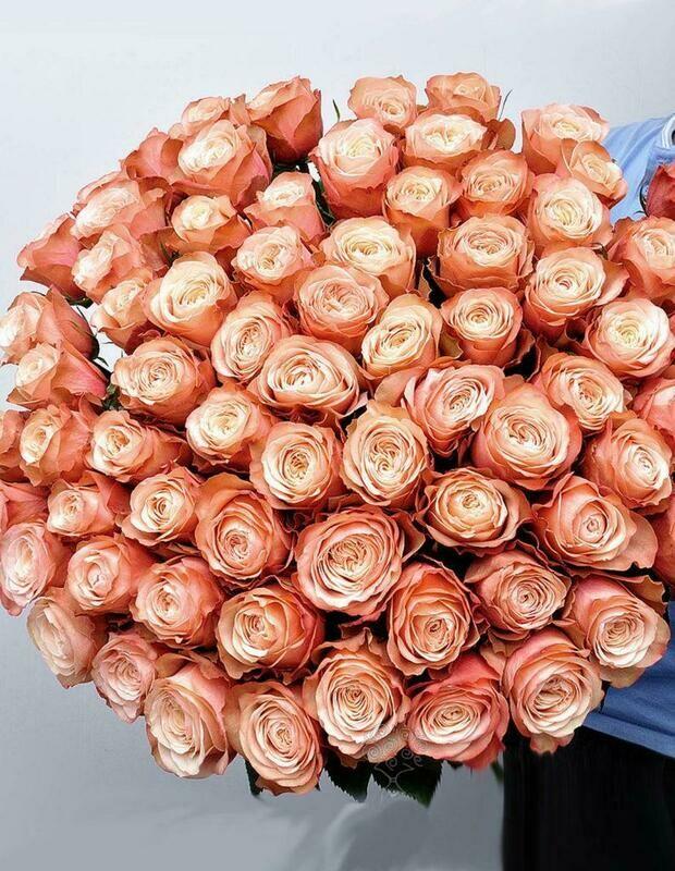 51 пионовидная роза (Эквадор) Kahala 60 см
