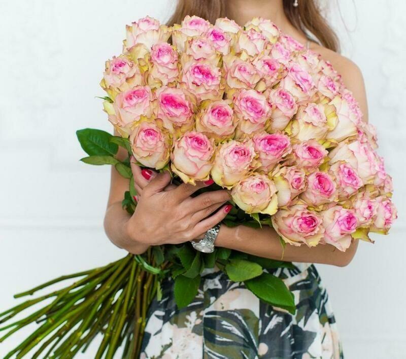 51 роза (Эквадор) Эсперанс 60 см