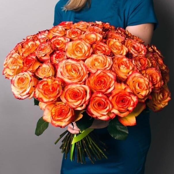 51 роза (Эквадор) Хай Мэджик