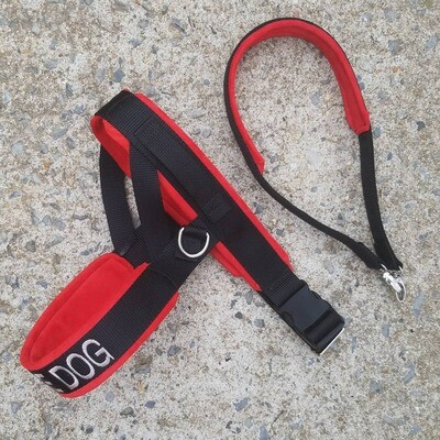 Straight Front Padded Leather Harness