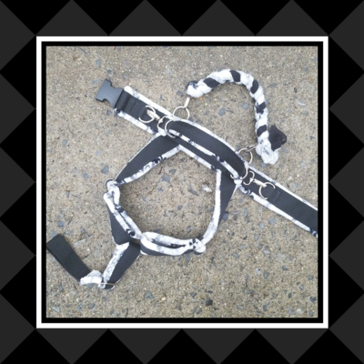 Y-Front Padded Leather Harness