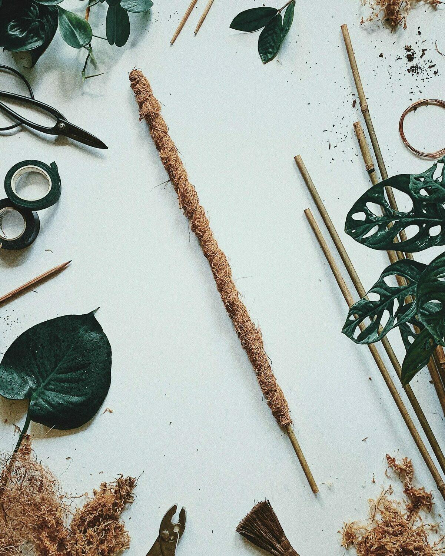 Moss Pole