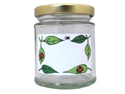 Jam Jar Labels 'Bug Life'