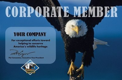 Corporate Donation