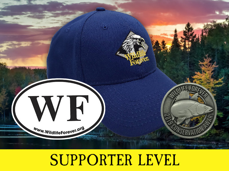 Supporter Membership