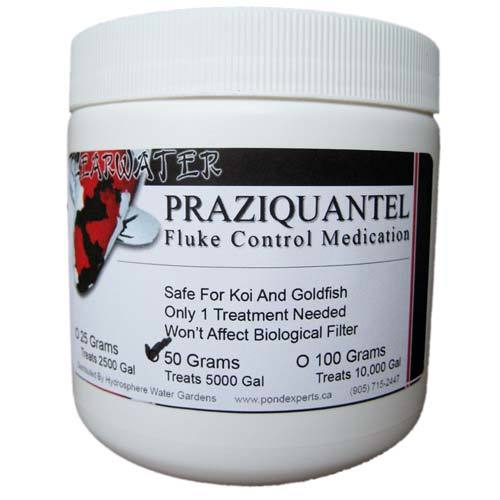 praziquantel fluke treatment for fish 50g