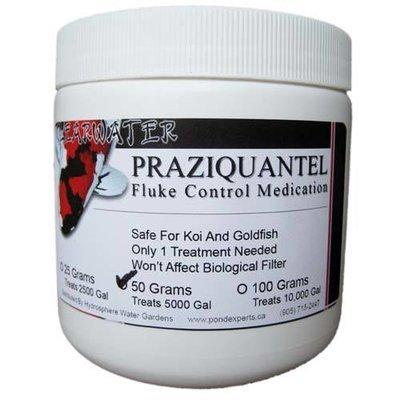 Praziquantel Fluke Treatment For Fish  - 50g
