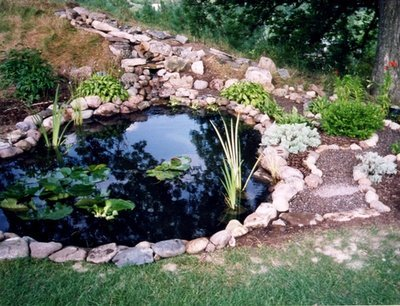 Michigan Koi Pond Kit