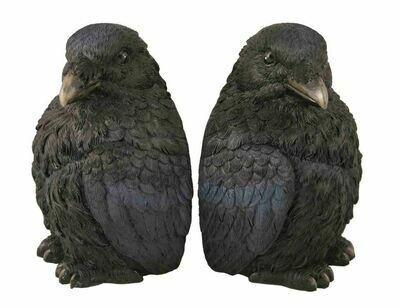 Corvus Bookends