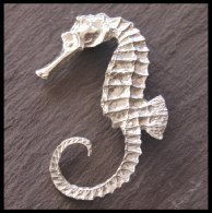 Seahorse Ladycrow Pewter Brooch in Gift Box