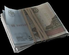 Ingame Cash