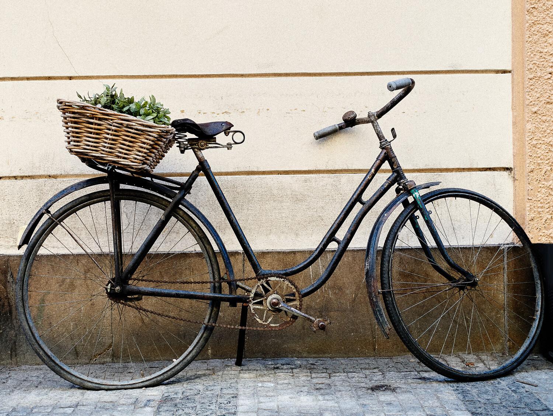 Polkupyörä Montenegro 50x66 cm alumiini