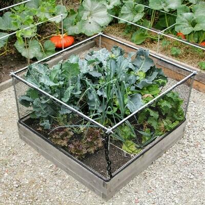 Fruit- en groentekooi op maat van je moestuinbak   B 107 cm