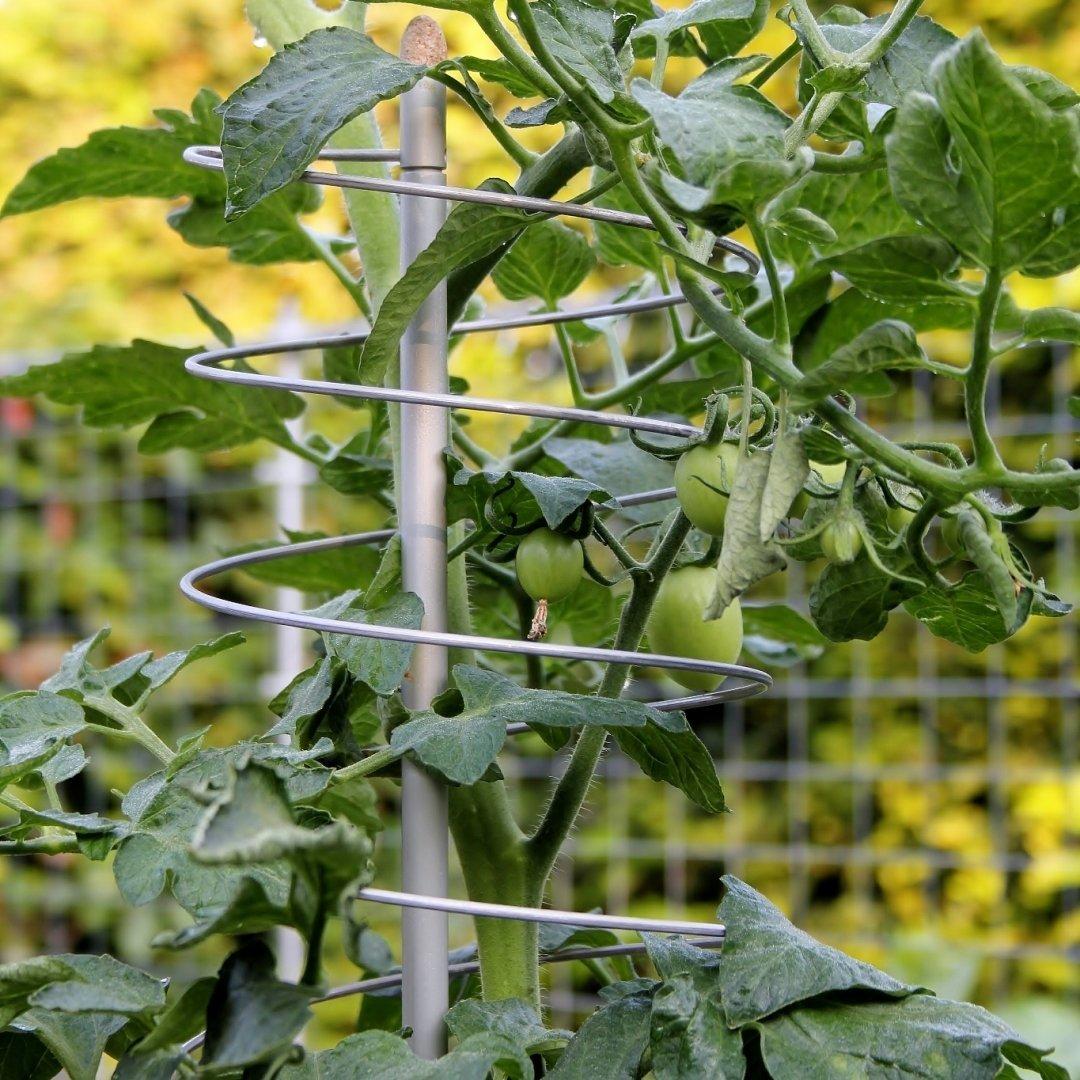 2 uitrekbare klimplantensteunen Smart Climb | H 200 cm
