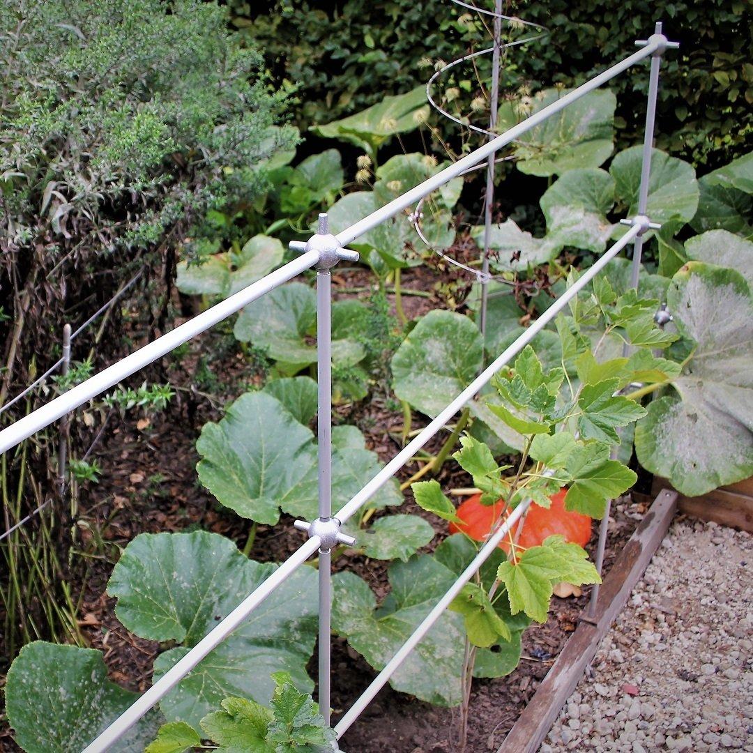Klimrek Voor Planten.Uitbreidbaar Klimrek Voor Planten Smart Trellis