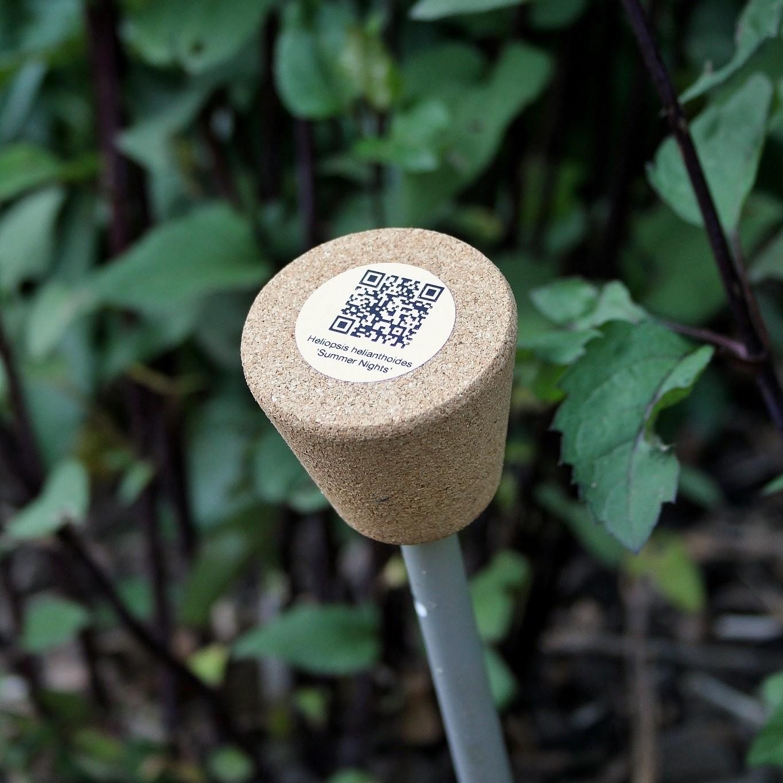 Set duurzame plantenlabels Smart Label | H 48 cm