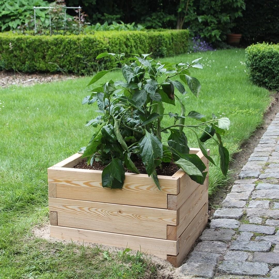 Modulaire houten plantenbak | L 57 x B 57 x H 25 cm