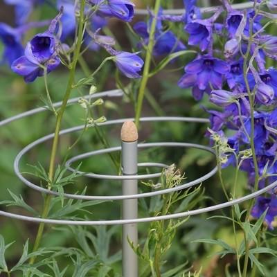 2 spiraalvormige plantensteunen Smart Twister | ø 30 cm
