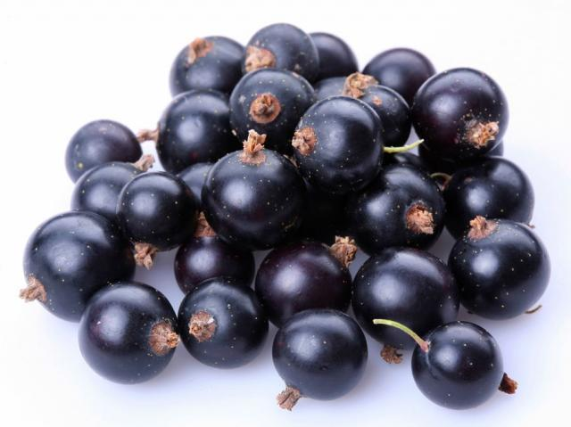 D'Olivo Black Currant Balsamic Vinegar 206