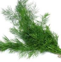 D'Olivo Fernleaf Dill Olive Oil 112