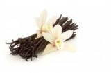 D'Olivo Tahitian Vanilla Balsamic Vinegar Condimento