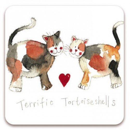 Terrific Tortoiseshells