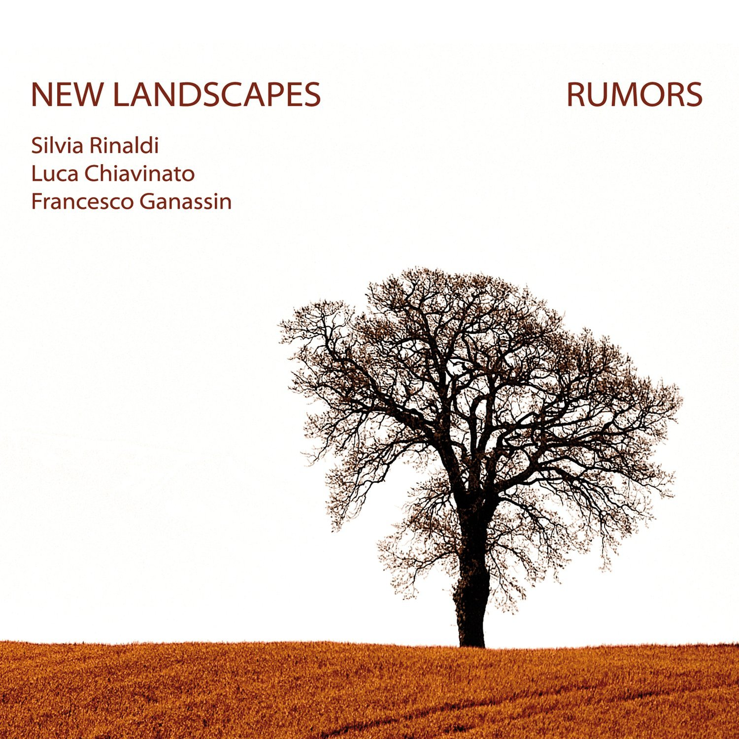 NEW LANDSCAPES   «Rumors»