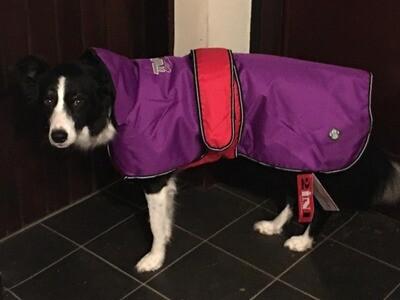 TVRCC 2-in-1 Dog Coat
