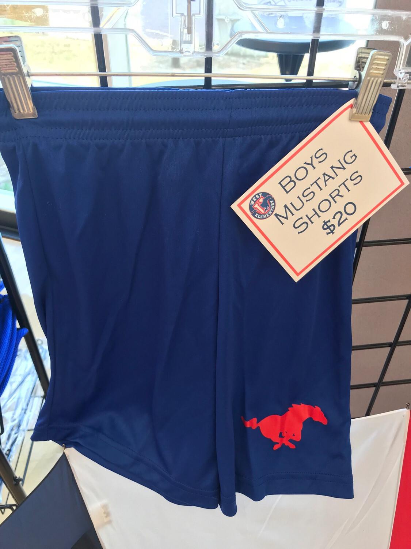 Boys Mustang Shorts Blue - XL