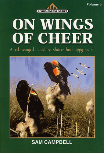 On Wings of Cheer (paperback)