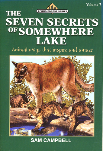 The Seven Secrets of Somewhere Lake (paperback)