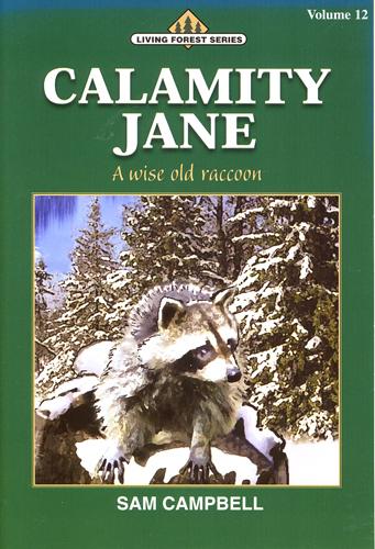 Calamity Jane (Paperback)