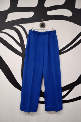 Electric Blue Pants - Size Medium