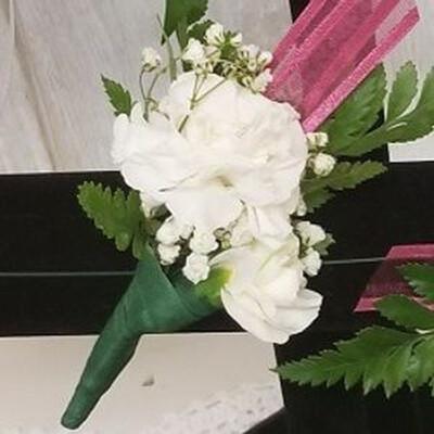 Two Mini Carnation Bout