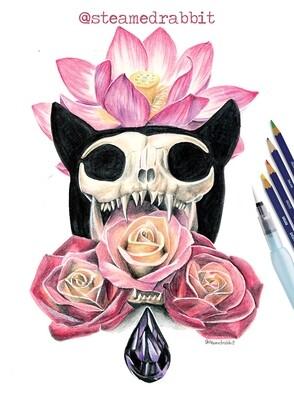 Catskull