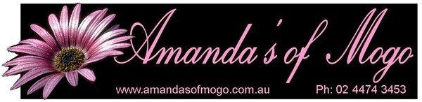 Amanda of Mogo