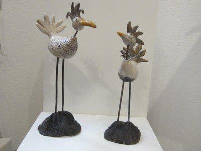 Oiseaux farfelus