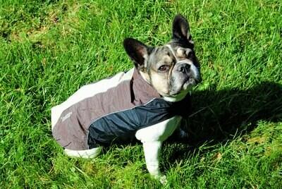 Touchdog Outdoormantel braun  %%%%%% Auslaufartikel