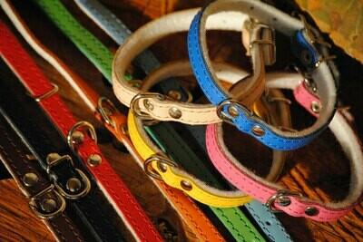 Halsband Leder- Filz klein